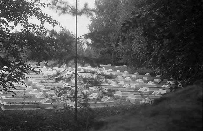 fifties36 Лагерь для военнопленных на Каме Блог писателя Сергея Синенко История и краеведение Татарстан